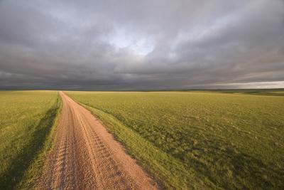 A Road Through Oglala National Grassland in Nebraska