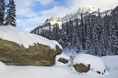 The Alberta Rocky Mountains