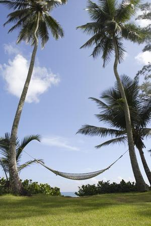 A Hammock Swaying in the Breeze Next to a Beach