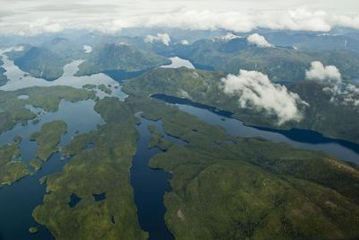 Aerial View of the Great Bear Rainforest