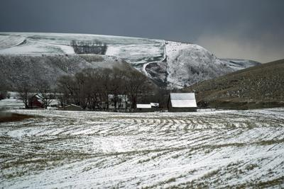 Farmland after Winter Snow