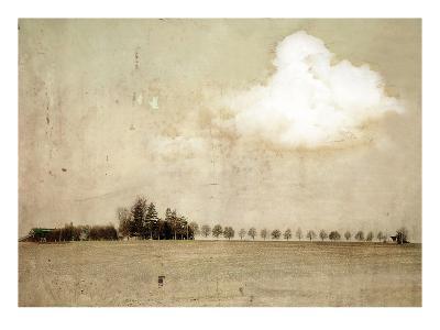 Crop Field and Barn