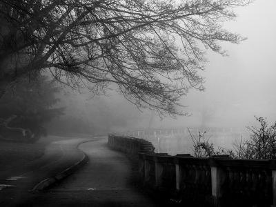 Wandering, Dreaming