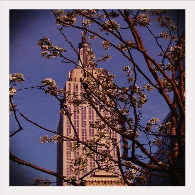 Empire State Building in the Spring, Manhattan, New York City