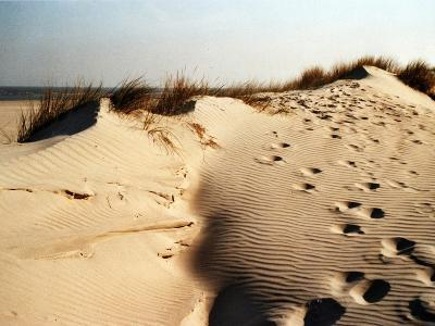 Sand Dunes and Foot Prints