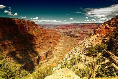 Grand Canyon - National Park - Arizona - United States