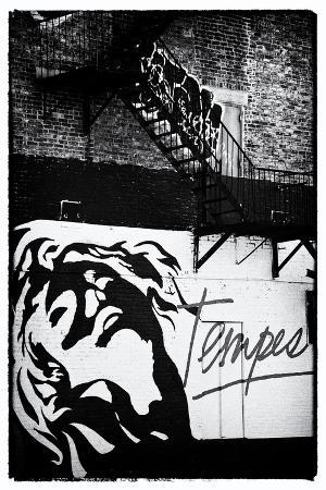 Street Art - Tempest - Manhattan - New York - United States