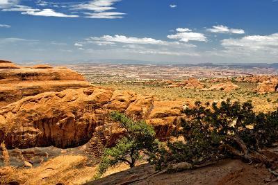 Devils Garden - Landscape - Arches National Park - Utah - United States