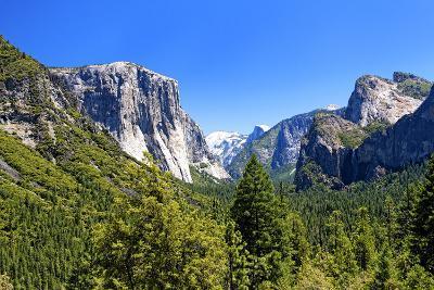El Capitan - Yosemite National Park - Californie - United States