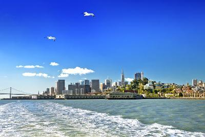 San Francisco bay - Californie - United States
