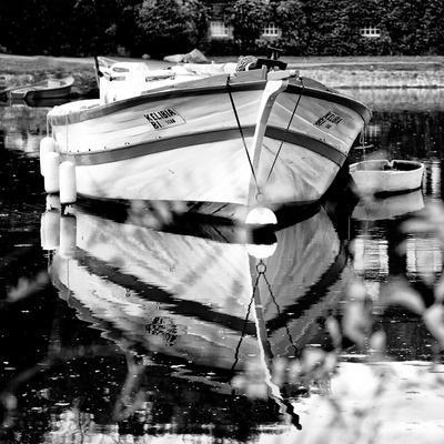 Vertoux - Loire-Atlantique - Pays de la Loire - France