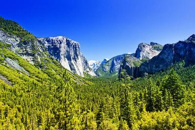 El Capitan - Yosemite National Park - Californie - United States