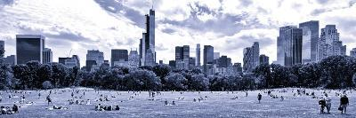 Panoramic Landscape, a Summer in Central Park, Lifestyle, Manhattan, NYC, Blue Light