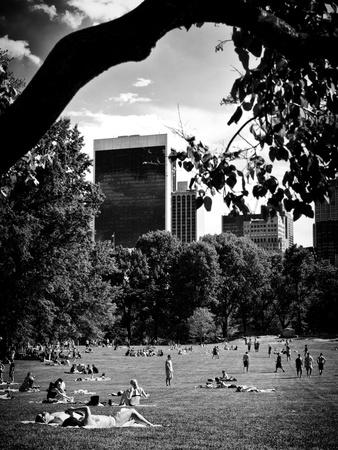 A Summer in Central Park, Manhattan, New York City, Black and White Photography