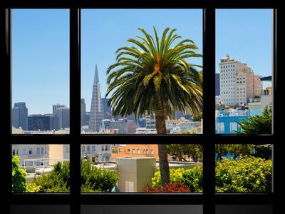 Window View, Special Series, Downtown, Transamerica Pyramid, San Francisco, California, US