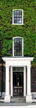 Facade of an English House with Ivy Leaves - Mallinson House in St Albans - UK - Door Poster