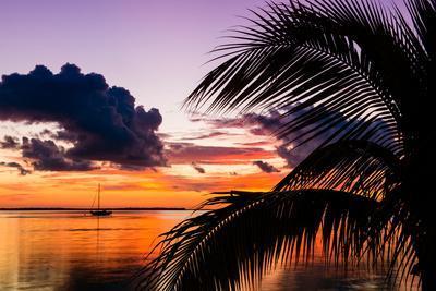 Sunset in Paradise - Florida
