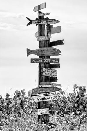 Destination Signs - Florida