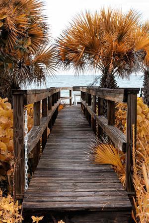Boardwalk on the Sea