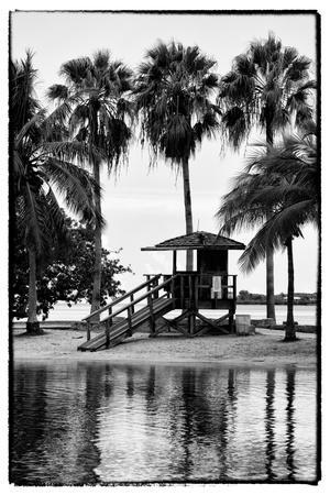 Coastal Beach Landscape - Miami - Florida