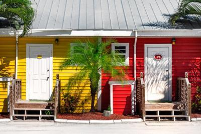 Duo Colored Houses - Florida