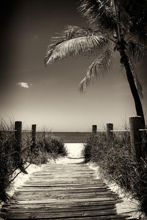 Boardwalk on the Beach - Florida