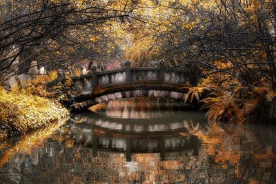 China 10MKm2 Collection - Romantic Bridge in Autumn