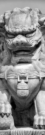 China 10MKm2 Collection - Stone Lion Statue
