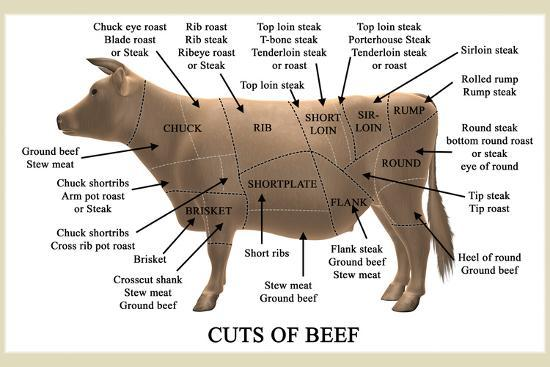 Cuts Of Beef Photographic Print By Take 27 Ltd At Allposters