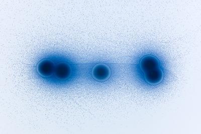 Genetically Modified E. Coli Bacteria