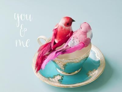 You and Me Love Birds