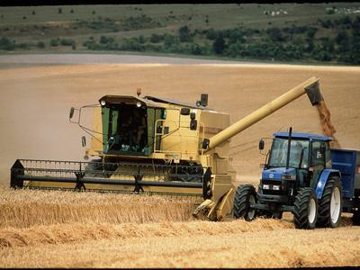 Combine Harvester Off-loading Grain