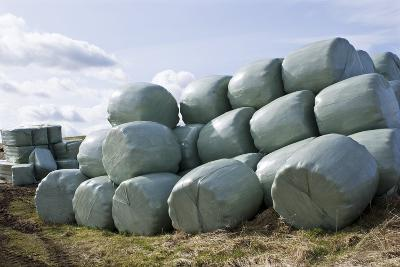 Wrapped Hay Bales