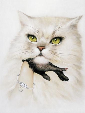 Domestic Cat, Conceptual Image