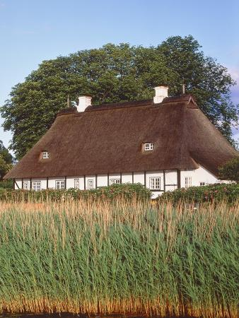 Half timbered house with reed roof