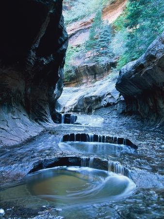 Riverbed, Zion National Park, Utah, USA
