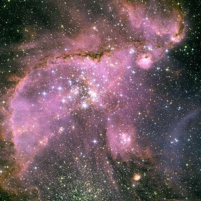 NGC 346 Star Cluster