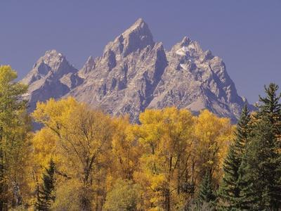 Autumn Color in Grand Teton National Park