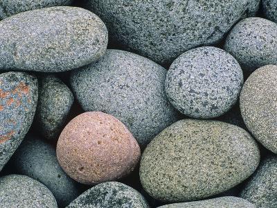 Detail of Pebbles on Long Island, Nova Scotia, Canada