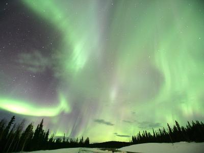 Aurora Borealis or Northern Lights, Yukon.