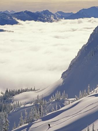 Skier Skiing Fresh Deep Powder in Backcountry Near Fernie, East Kootenays, British Columbia, Canada