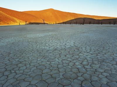 Dunes rising from dry bed at Dead Vlei