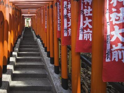 Line of torii gates at Hie Shrine