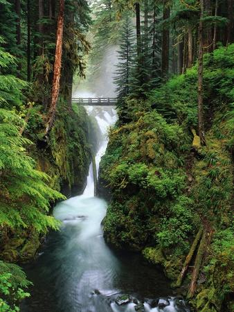 Sol Duc Falls Cascading Through Rainforest