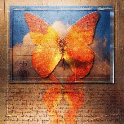 Overlaying Butterflies and Text