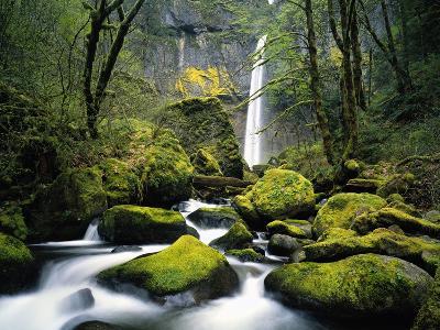 Stream Flowing over Mossy Rocks