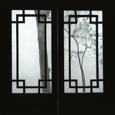 Trees Seen Through House Windows in Pingyao