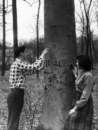 Teenagers Carving Initials on a Tree