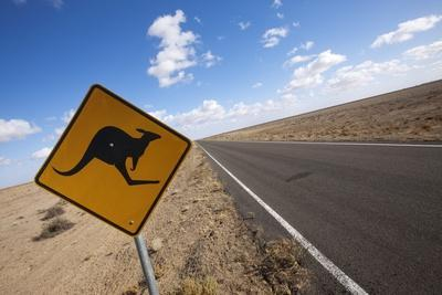 Kangaroo Crossing Sign in the Australian Outback
