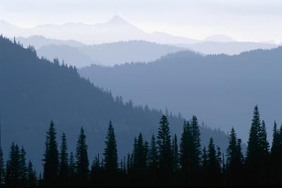 Fog in Cascade Range